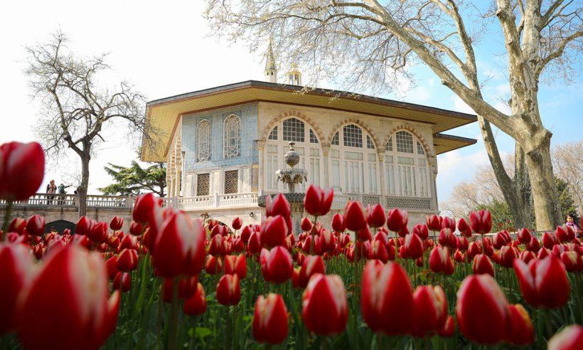 Kültürümüze kök salan çiçek: Lale