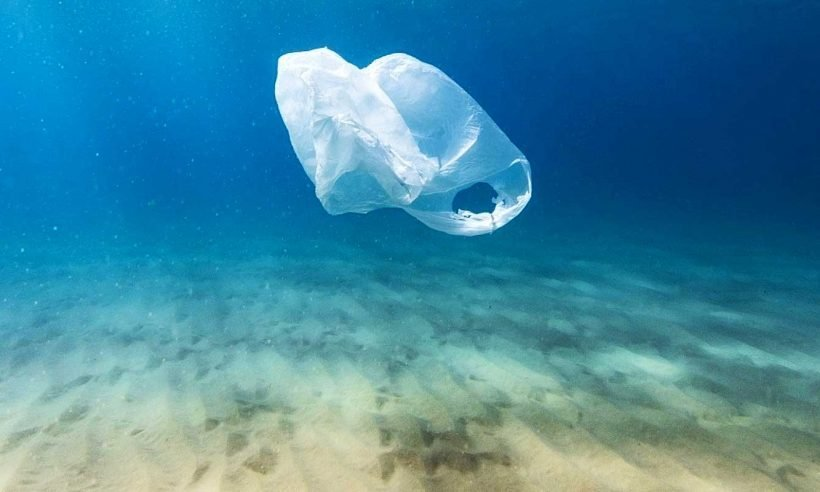 Denizlerden 20 bin ton çöp çıktı