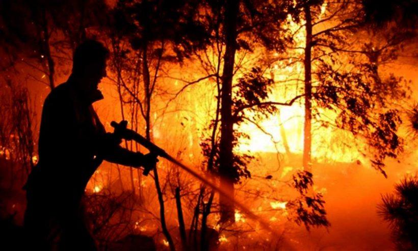 Bakanlıktan yangın açıklaması