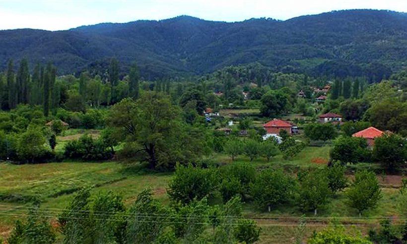 19,8 milyon hektar ormanlık alan tapusuna kavuştu