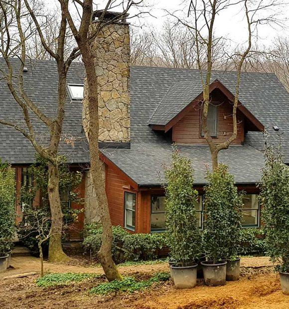 Modern çatılar için ilham kaynağı