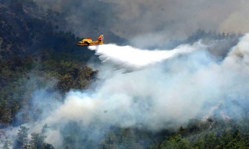 53 ilde çıkan 275 orman yangınının 272'si kontrol altına alındı