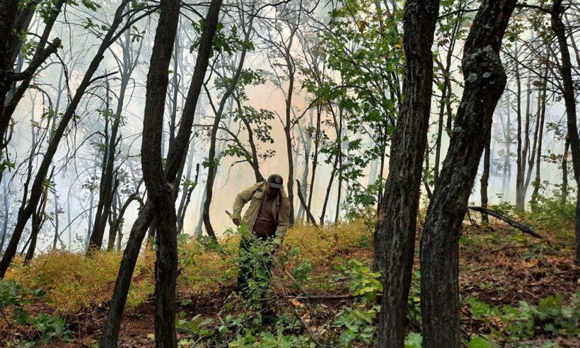 Tunceli'deki yangın kontrol altında