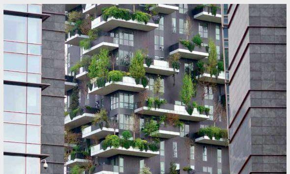 Zirvedeki yeşil alanlar: Kat bahçeleri